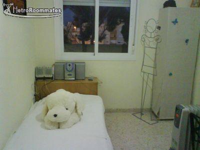 $400 room for rent Jerez Cadiz Province, Andalucia