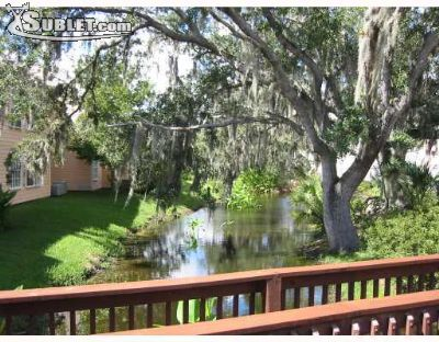 Image 10 furnished 3 bedroom Apartment for rent in Kissimmee, Osceola (Kissimmee)