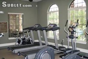 Image 2 furnished 3 bedroom Apartment for rent in Davenport, Polk (Lakeland)