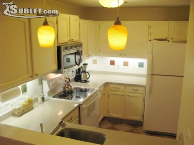 Image 4 furnished 2 bedroom Apartment for rent in Wallingford, Greater New Haven