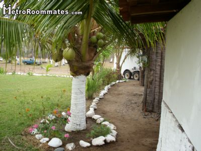 Image 3 furnished 5 bedroom Hotel or B&B for rent in Petatlan, Guerrero