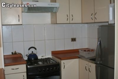 Image 3 furnished 1 bedroom Apartment for rent in Santiago, Santiago City