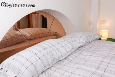 Image 10 furnished 1 bedroom Apartment for rent in Gianicolense, Roma (City)