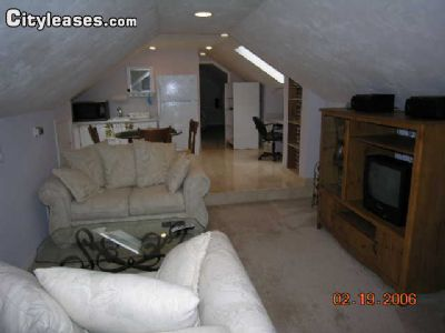 Image 6 Furnished 1 bedroom Apartment for rent in Gainesville, Alachua (Gainesville)