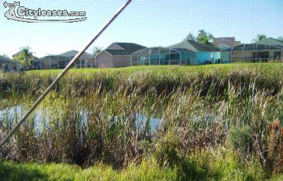 Image 5 furnished 5 bedroom House for rent in Davenport, Polk (Lakeland)