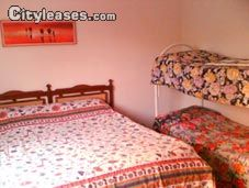 Image 7 furnished 2 bedroom Apartment for rent in Pomezia, Roma (Province)