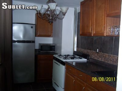 Image 4 furnished 1 bedroom Townhouse for rent in Crown Heights, Brooklyn