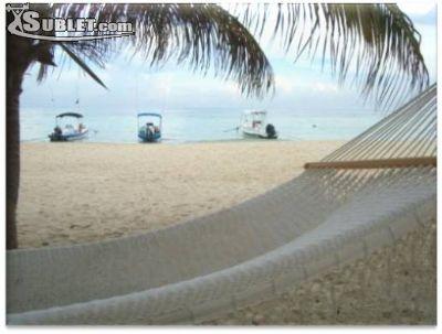 Image 2 furnished 2 bedroom Loft for rent in Playa Del Carmen, Quintana Roo