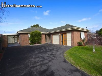 Apartments  Houses  Rent on Apartments In Melbourne Apartments For Rent Melbourne Apartment