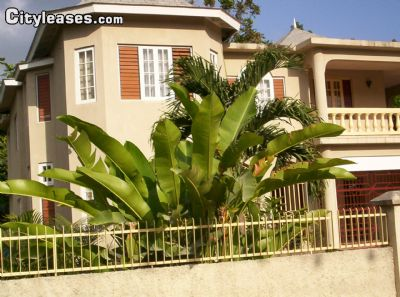 $1900 room for rent Ocho Rios Saint Ann, Jamaica