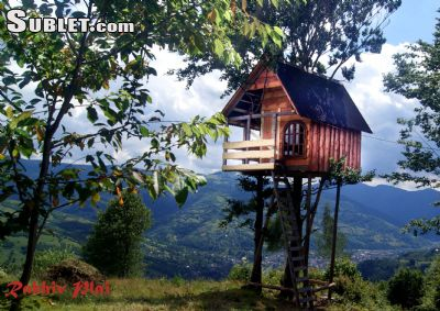 Image 8 furnished 3 bedroom House for rent in Rakhiv, Zakarpattia