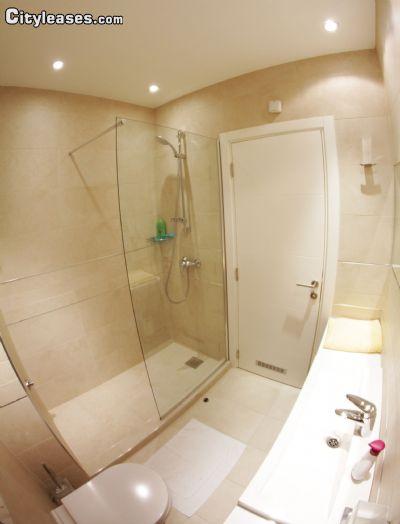 Image 3 furnished 3 bedroom Apartment for rent in Stari Grad, Belgrade