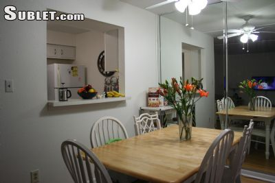 Image 4 furnished 2 bedroom Apartment for rent in St Petersburg, Pinellas (St. Petersburg)