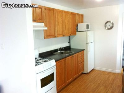Image 2 furnished Studio bedroom Apartment for rent in Ottawa Central, Ottawa Area