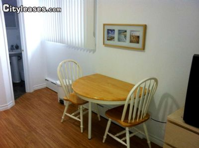 Image 3 furnished Studio bedroom Apartment for rent in Ottawa Central, Ottawa Area