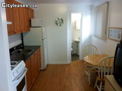Image 6 furnished Studio bedroom Apartment for rent in Ottawa Central, Ottawa Area