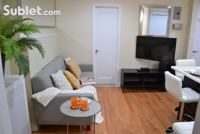 Image 7 furnished 2 bedroom Apartment for rent in Boerum Hill, Brooklyn
