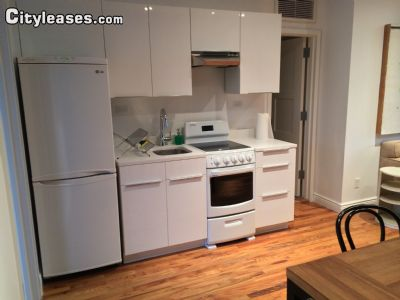 Image 4 furnished 1 bedroom Apartment for rent in Gowanus, Brooklyn