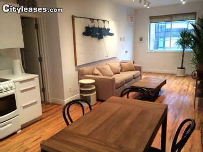 Image 5 furnished 1 bedroom Apartment for rent in Gowanus, Brooklyn