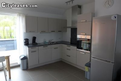Image 4 furnished 1 bedroom Apartment for rent in Liege, Liege