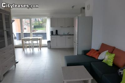 Image 6 furnished 1 bedroom Apartment for rent in Liege, Liege
