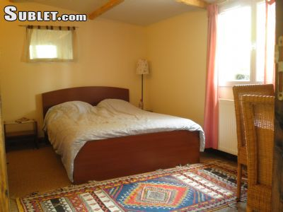 Image 1 furnished 1 bedroom Apartment for rent in Vitry-sur-Seine, Val-de-Marne