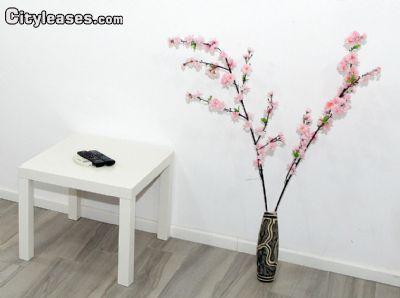 Image 9 furnished 1 bedroom Apartment for rent in Bat Yam, Tel Aviv
