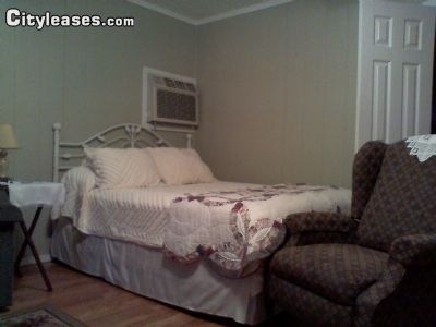 Image 3 furnished 1 bedroom Apartment for rent in Ashley County, Timberlands