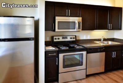 Image 5 either furnished or unfurnished 2 bedroom Apartment for rent in Baltimore Central, Baltimore City