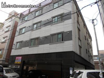 $500 room for rent Suyeong, Busan