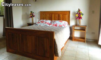 Image 7 furnished 3 bedroom House for rent in Osa, Puntarenas