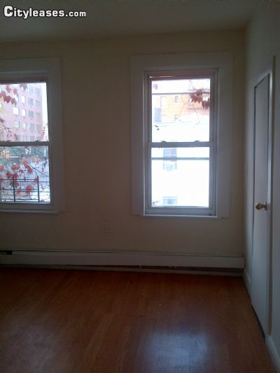 Image 5 furnished 4 bedroom Townhouse for rent in Crown Heights, Brooklyn