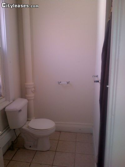 Image 7 furnished 4 bedroom Townhouse for rent in Crown Heights, Brooklyn