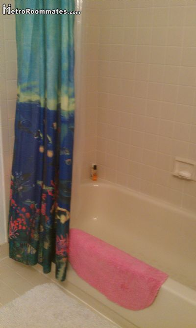 Image 4 Furnished room to rent in Doylestown, Bucks County 1 bedroom House