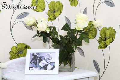 Image 2 furnished 1 bedroom Apartment for rent in Tsentralny, Minsk City