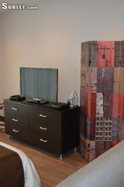 Image 3 furnished 1 bedroom Apartment for rent in Miguel Hidalgo, Mexico City