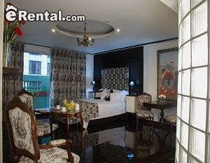 Image 2 furnished Studio bedroom Loft for rent in San Telmo, Buenos Aires City