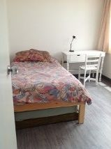 Image 6 furnished 2 bedroom Apartment for rent in Coyoacan, Mexico City
