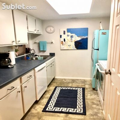 Image 7 furnished 1 bedroom Apartment for rent in St Petersburg, Pinellas (St. Petersburg)