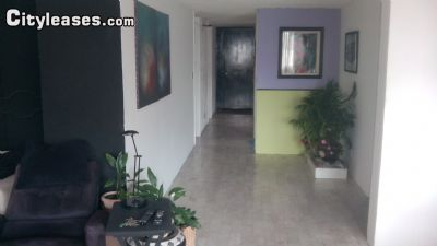 Image 1 furnished 4 bedroom Apartment for rent in Miguel Hidalgo, Mexico City