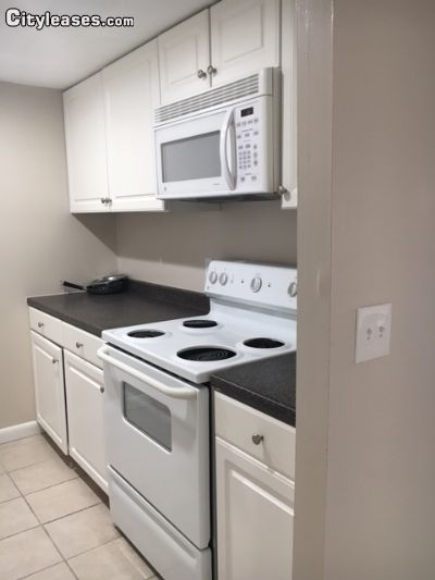1BR Apartment for Rent on Simmonsville, Johnston