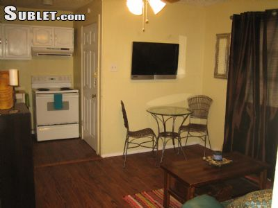 Image 4 furnished 1 bedroom Loft for rent in Other C San Antonio, Central San Antonio