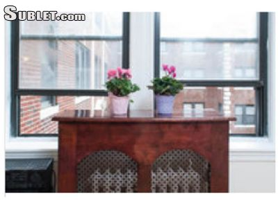 Image 9 furnished 1 bedroom Apartment for rent in Brighton, Boston Area