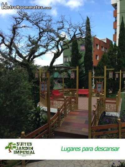 Image 4 Furnished room to rent in Guatemala City, Guatemala 1 bedroom Apartment