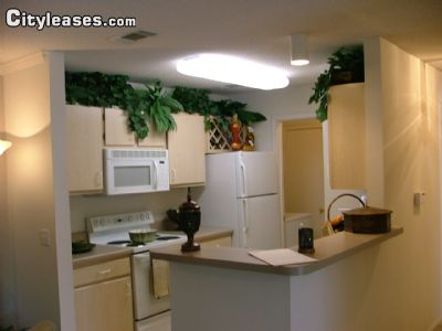 Image 3 unfurnished 2 bedroom Apartment for rent in Pensacola, Escambia (Pensacola)