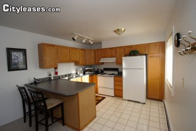 Image 4 furnished 2 bedroom Apartment for rent in Downtown, Anchorage Bowl
