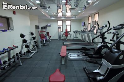 Image 9 furnished 2 bedroom Apartment for rent in Dubai, Dubai