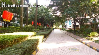 Image 8 Furnished room to rent in Nanshan, Shenzhen 4 bedroom Apartment