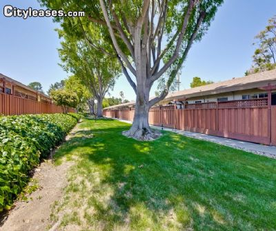 Image 5 unfurnished 1 bedroom Apartment for rent in Sunnyvale, Santa Clara County