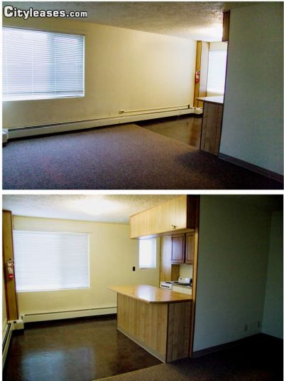 Image 1 unfurnished Studio bedroom Apartment for rent in Fairbanks North Star, Interior